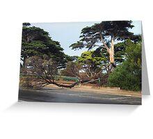Natures Vengeance - Mornington Victoria Greeting Card