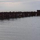 Pier to Nowhere - Mornington Victoria by Karen Coulter