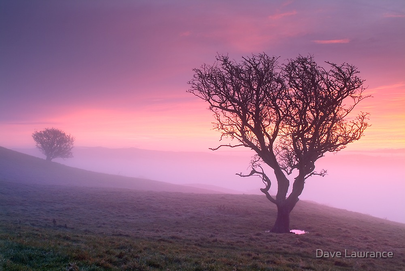 Misty sunrise, The Helm - Cumbria by Dave Lawrance