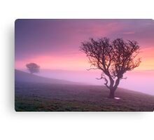 Misty sunrise, The Helm - Cumbria Canvas Print