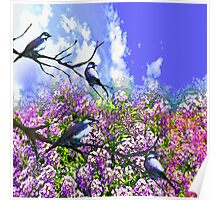 Blue Birds and a Summer Day Poster