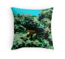 hidden against the coral Throw Pillow