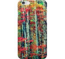 MAPLE TREES,AUTUMN iPhone Case/Skin