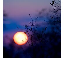 Sunset Over Kruger National Park Photographic Print