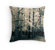 Along The Way Of Pine Trees Throw Pillow
