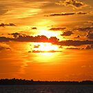 Sunset on Lake Erie by Monnie Ryan