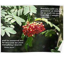 Psalms 34 v 3-4 in berries Poster