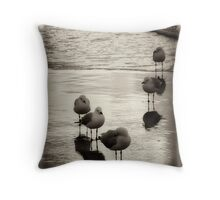 Silver Gulls on the beach Throw Pillow