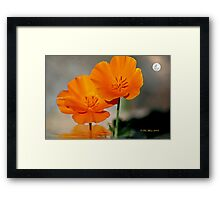 Clearly Above Framed Print