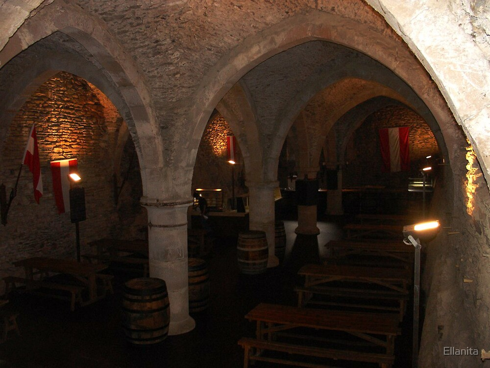 Dungeon cellar wine bar  by Ellanita