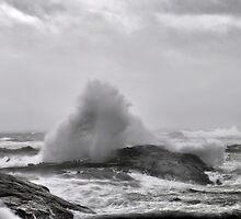Hurricane Earl  by HighHeadArtwork
