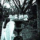 Angel by Jane Keats