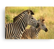 Kruger Mother and Foal Canvas Print