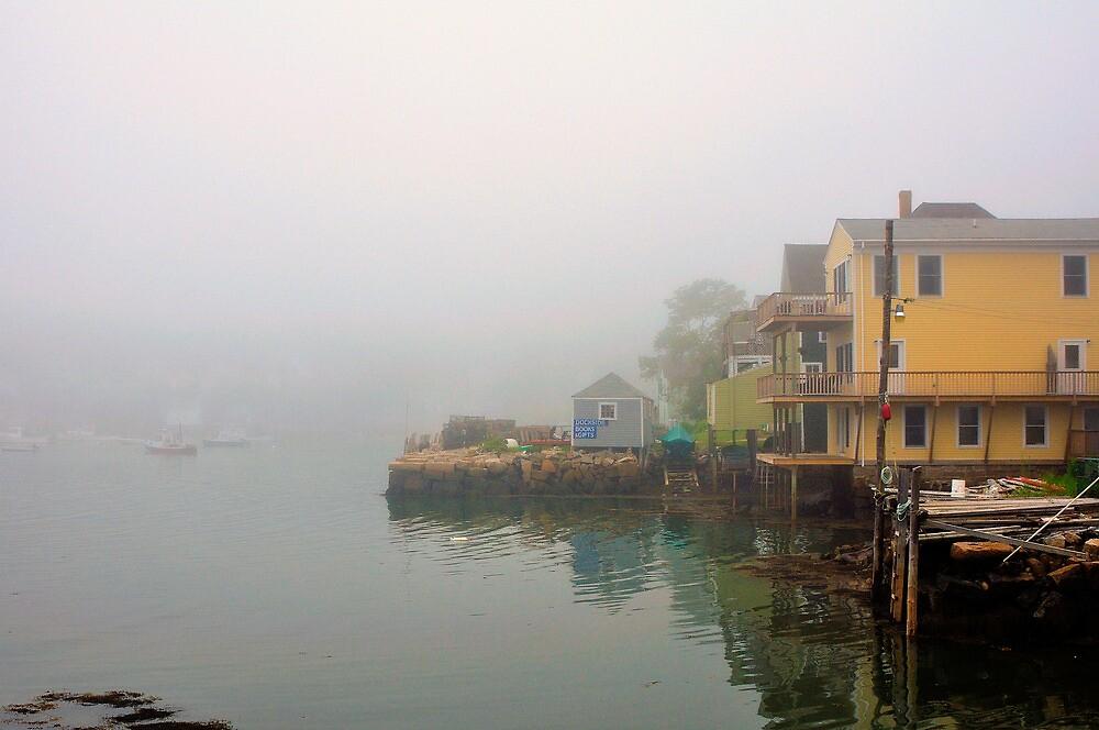 House, Fog, Stonington, Maine by fauselr