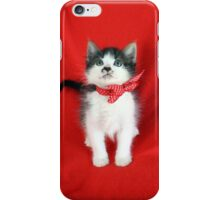 In Memory of Don Draper - A Rescue Cat iPhone Case/Skin