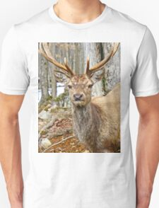 Check out my rack T-Shirt