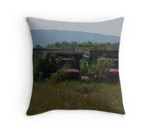 Abandoned in the North Throw Pillow