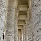 St Peter's Square Columns by Trish Meyer