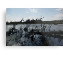 peace and quiet Northern Ontario Metal Print