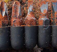 Rusty screwdriver bits by buttonpresser