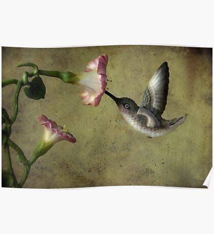Winged Jewel Poster