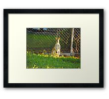 How the Sun Lights Up Your Beauty Framed Print