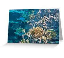 Aquarium. Xcaret Eco Park. Mexico Greeting Card