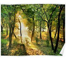 Sunshine pathway Poster