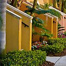 In St Petersburg, Florida by Kent Burton