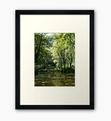 Tranquil French landscape Framed Print