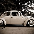 Beetle History by misscassphoto