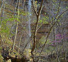Hemmed n Hollow waterfall Buffalo River, Arkansas by David  Hughes