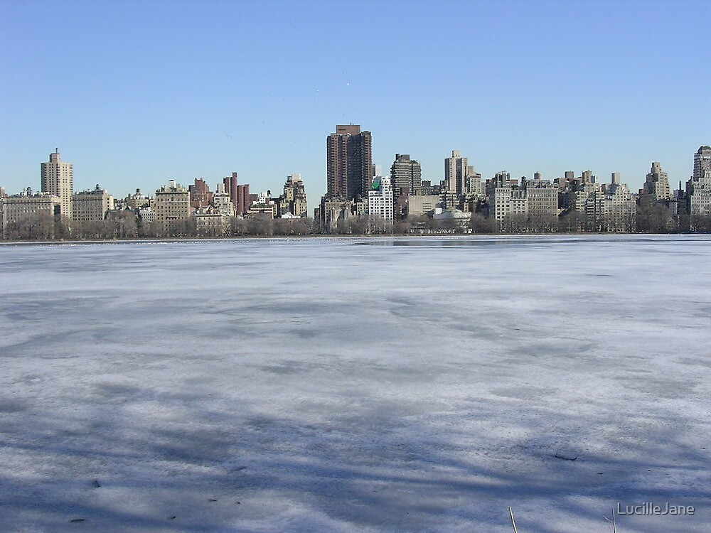 new york in winter by LucilleJane