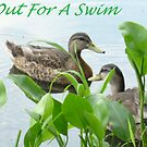 Out For A Swim by Bea Godbee