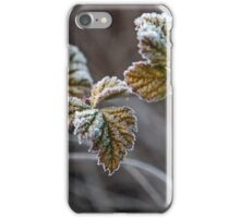 Frosty - NSW Australia iPhone Case/Skin