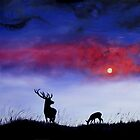 Stag In Moonlight by Linda Woodward