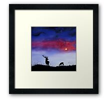 Stag In Moonlight Framed Print