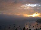 Morning Fog by John Douglas