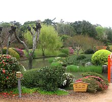 Trees ,water and bridge,Japanese Gardens, Toowoomba by Marilyn Baldey