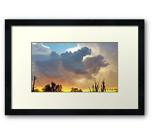 Soft 17  Framed Print