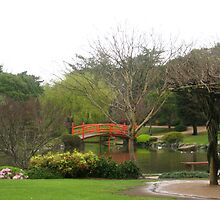 Wisteria covered shelter,Japanese Gardens, Toowoomba by Marilyn Baldey