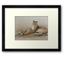Tiger and cub Framed Print