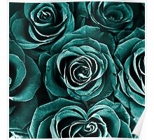 Rose Bouquet in Turquoise Poster