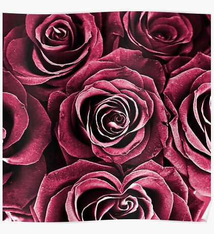 Rose Bouquet in Red Poster