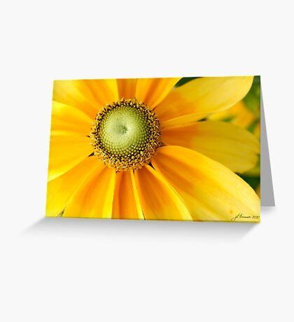 Sunny Side Up! Greeting Card
