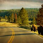 Bison Landscape III by Miles Glynn