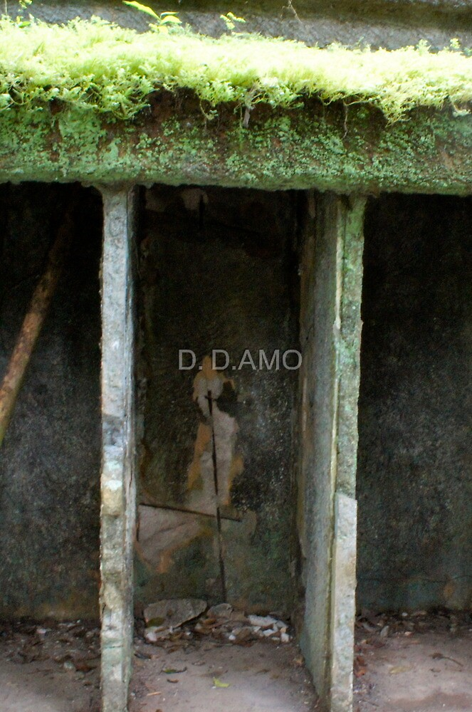 SHE'S Changing! by D. D.AMO
