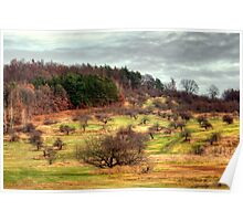 New England Apple Orchards Poster