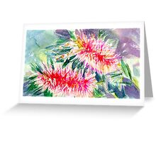 Pink Bottlebrush Rectangle Greeting Card