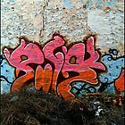 Graffiti Peel Wall by sedge808